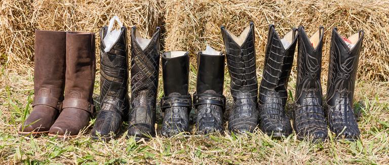consejor para organizar los zapatos